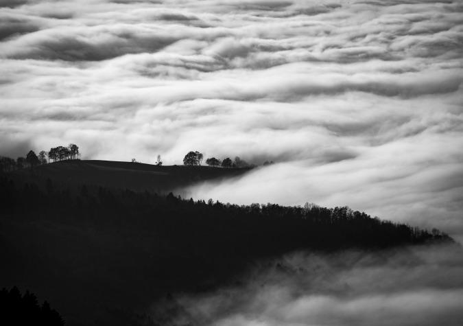 Foggy Scenery1