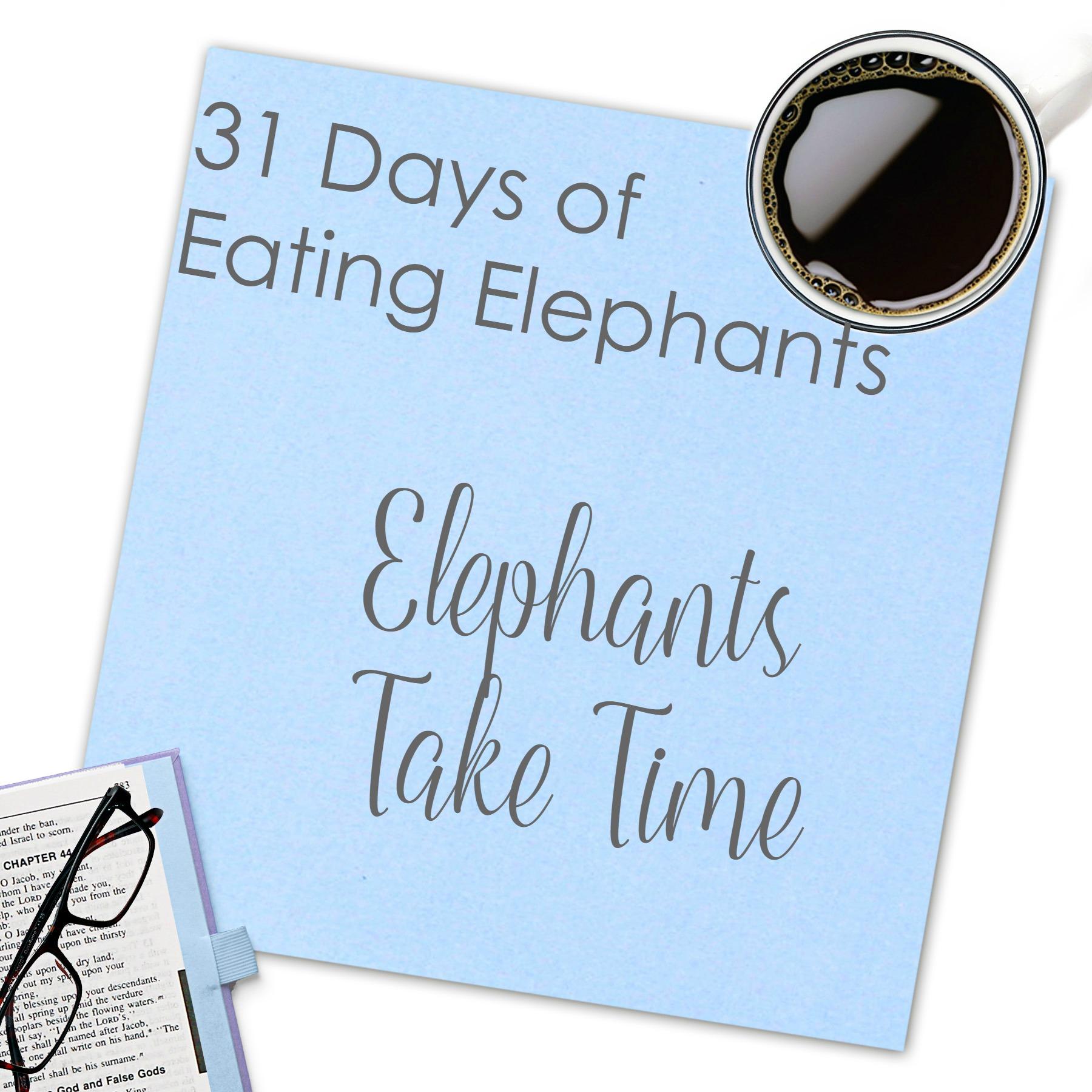 Elephants Take Time