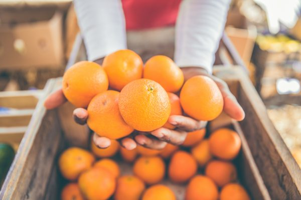 Oranges - The Photo Forest