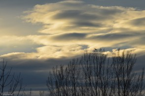 cloud arms