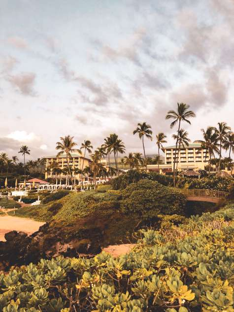 With five beaches, golf courses, stunning ocean views, award-winning restaurants, and shops, Wailea is the perfect vacation spot. Here is your ultimate guide to the Wailea area: from shopping, to things to do, to dining, and places to stay #wailea #maui #hawaii #hawaiitrip Wailea Maui | Grand Wailea | Hawaii vacation | Hawaii honeymoon |Maui vacation | Best place to honeymoon | honeymoon destination |Things to do in Maui | things to do in wailea |things to do in hawaii |Hawaii travel Maui Hawaii