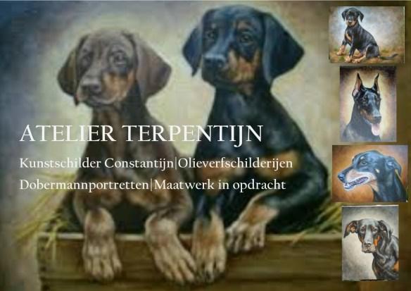 constantijn-3-nieuws-blog-en-facebook