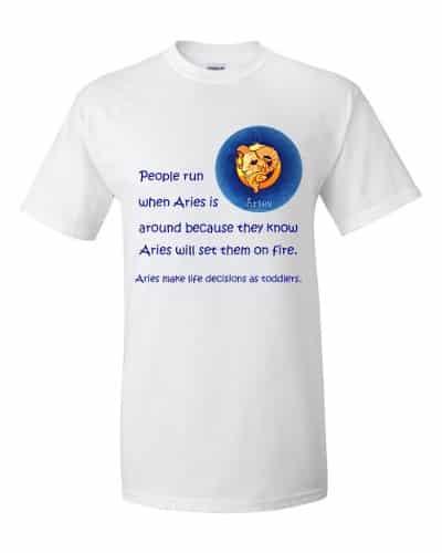 Aries T-Shirt (white)