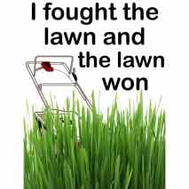 I Fought the Lawn