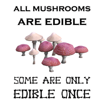 All Mushrooms are Edible
