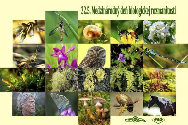 5_22_600biologicka_rozmanitost