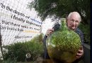 David Latimer – twórca ogrodu zamkniętego w butli