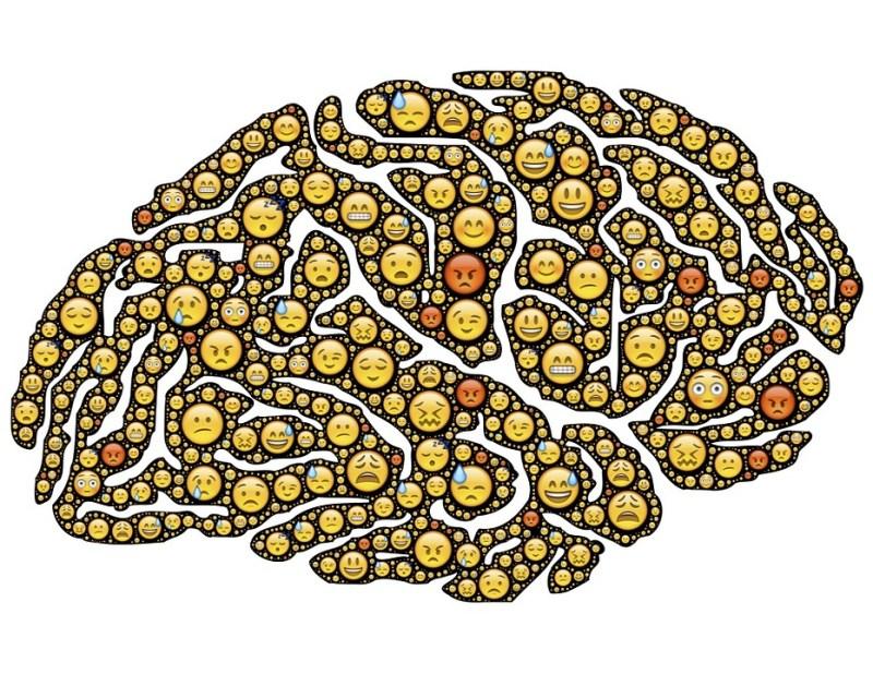 brain-954816_960_720