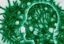 Wytrenowany mózg ignoruje negatywne emocje