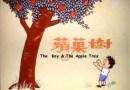 Historia pewnego chłopca i drzewa