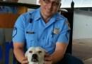 Bezpański pies został adoptowany przez posterunek policji