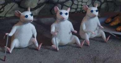 Naukowcy po raz pierwszy częściowo przywrócili wzrok myszom
