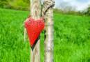 """Matt Kahn – """"Rewolucja miłości…zaczyna się od ciebie"""" – przełomowe nauki o miłości: najpotężniejszym katalizatorze zmian i uzdrowienia"""