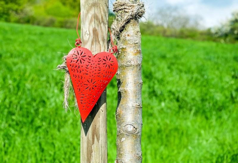 heart-1388798_960_720