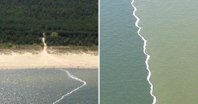 Niezwykłe zjawisko na Bałtyku. Tak wygląda spotkanie wody słodkiej ze słoną