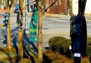 Szaliki na drzewach i latarniach – kolejna inicjatywa pomocy bezdomnym