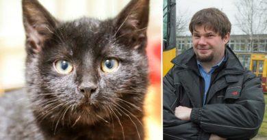 Motorniczy z Łodzi, który na ponad godzinę zatrzymał tramwaj aby ocalić kota, został nagrodzony
