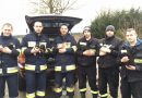 Wolontariusze zlokalizowali kryjówkę bezdomnej suczki i uratowali siedem szczeniąt