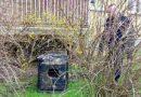 Nietypowy lokator zamieszkał w budce dla kotów
