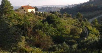 Polak otworzył na Sycylii centrum leczenia uzależnień. Jedyne takie na świecie