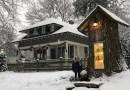 Rodzina postanowiła zrobić darmową bibliotekę w pniu starego drzewa