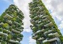Chińczycy budują pierwszą na świecie prawdziwie leśną metropolię