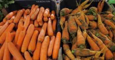 Odbarwiony owoc czy mało atrakcyjne warzywo wcale nie musi trafić do kosza. Tak robią w Hiszpanii i Portugalii