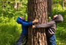 To udowodnione! Pobyt z dziećmi w lesie pomoże im w rozwoju
