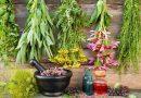 Chorujesz na grypę? Wypróbuj te rośliny… będą miały  zbawienne działanie