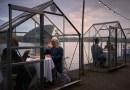 Restauracja w Amsterdamie rozstawiła stoliki w szklarniach, aby goście mogli zachować odpowiedni dystans