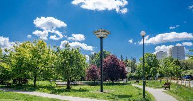 W Warszawie na Bielanach zbudowali… hotel dla jaskółek!