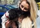 Mały pies uratował mieszkańców Nowej Soli. Pupil zbudził ich niepokojącym szczekaniem