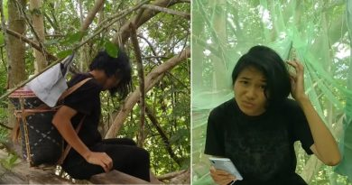 Nastolatka zdawała egzaminy na drzewie. To jedyne miejsce, gdzie znalazła dostęp do internetu