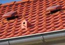 Małe domki ukryte w dachówkach. Projekt ma zwiększyć populację ptaków w miastach