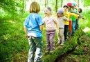 Przebywanie wśród zieleni zwiększa inteligencję dziecka