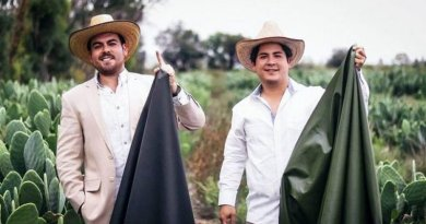 Dwóch przedsiębiorców z Meksyku stworzyło ekologiczną skórę z kaktusa