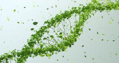 DNA z powietrza