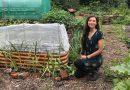 Włosi chcą mieć własne ogródki działkowe. Zainteresowanie wzrosło o 30 proc.