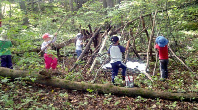 pozwalać na zabawy w lesie