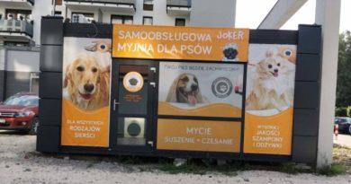 myjnię dla psów