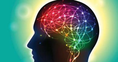 """Niezwykłe badanie. Mózg ma swój """"odcisk palca"""""""