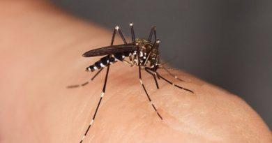 Znaleziono lekarstwo na groźny wirus. Będzie stosowany również zapobiegawczo