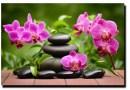 6 stron, które pomogą Ci osiągnąć stan Zen