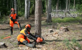 Бизнес-идея №25: «Валка леса»