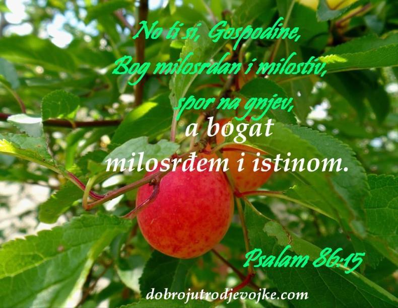 7 - psalam - 86-15