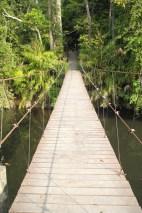 120116_Khao Yai National Park_Tajlandia (32)