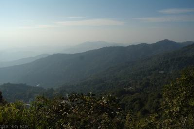 Doi Pui National Park (12)