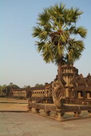 Angkor Wat o zachodzie slonca (6)