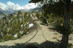 Annapurna Circut 2013 (44)