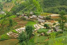 Tarasy ryzowe wokol Sapy Wietnam (23)